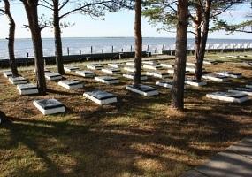 Братские могилы остров Ягры