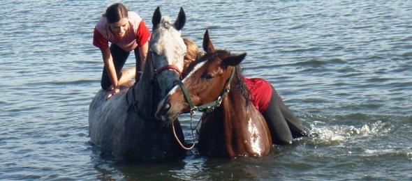 Девушки и кони