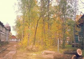Осенний дворик. Фото пейзажи - осень в Северодвинске.