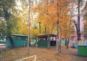 Желтая листва. Фото пейзажи - осень в Северодвинске.