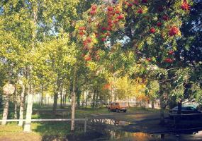 Ранняя осень. Фото пейзажи - осень в Северодвинске.