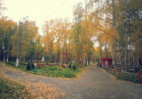 Золотая осень. Фото пейзажи - осень в Северодвинске.