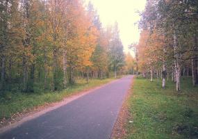 Осень в парке. Фото пейзажи - осень в Северодвинске.