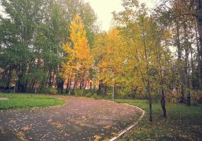 Сквер, листопад. Фото пейзажи - осень в Северодвинске.