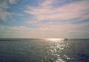У белого моря. Северодвинск, остров Ягры.