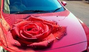 Аэрография на авто, красивые рисунки на машинах