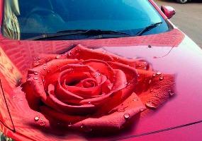 Аэрография 3D роза. Аэрография - фото.