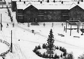 Елка, посёлок Судострой, 1937 год. Северодвинск в прошлом.