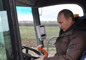 За рулём комбайна. Владимир Путин.