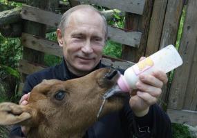 Кормилец и поилец. Владимир Путин.