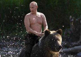 Владимир и медведь. Владимир Путин.