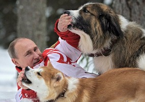 С собаками. Владимир Путин.