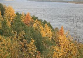На берегу Северной Двины. Фото города Новодвинск.